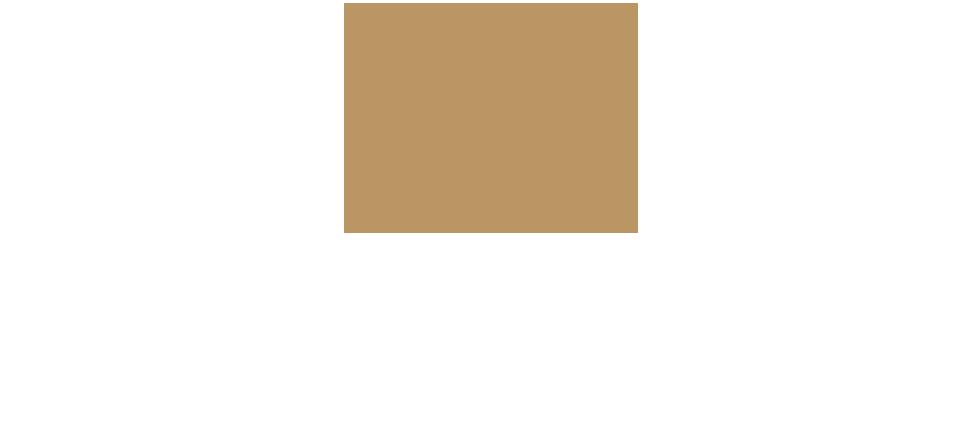 Doyle and Palmer Wealth Management Ltd Logo
